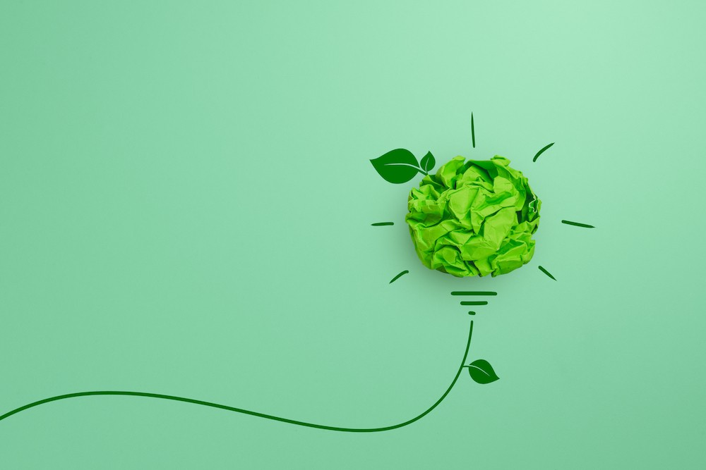 clean-service-ecologie